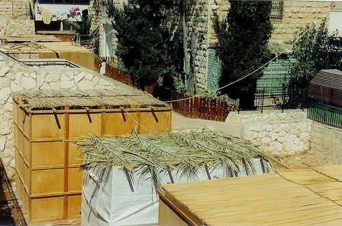 800px-Sukkah_Roofs